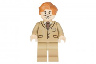 Main image for LEGO Professor Lupin